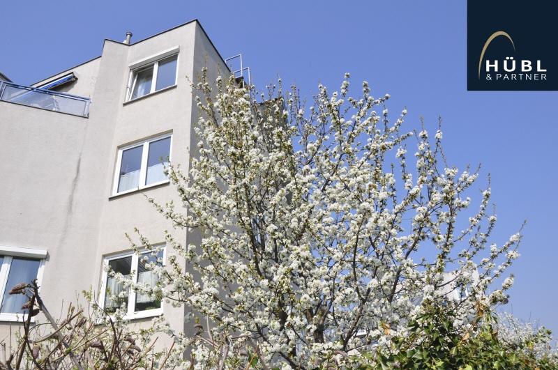 I05 Hübl&Partner-Kefedergrundgasse-Fassade-2