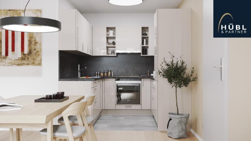 1.14 Saltenstrasse-Top-108-Küche