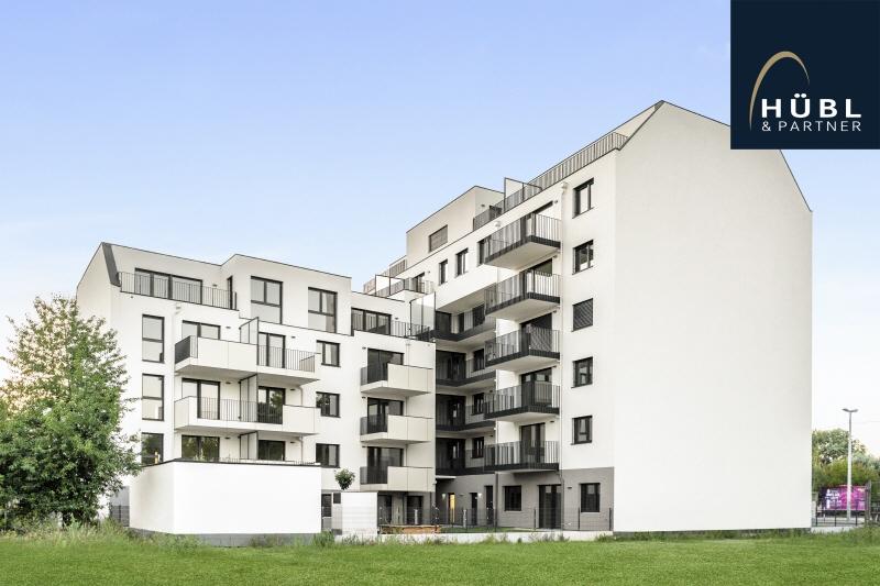 1.01 / Büro Projekt_Saltenstrasse_1_1220 Wien_Lobau_wohnen_040
